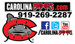 Mudcats Logo